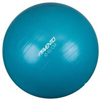 Avento Fitnes žoga / gimnastična žoga premer 65 cm modra