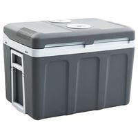 vidaXL Prenosna termoelektrična hladilna torba 45 L 12 V 230 V A++