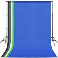 vidaXL Komplet za fotografski studio s 5 barvnimi ozadji in okvirjem