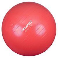Avento Fitnes žoga / gimnastična žoga premer 65 cm roza