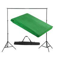 vidaXL Podporni sistem za ozadje 300 x 300 cm zelene barve